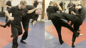 Read more about the article Wing Chun Sparring MasterClass