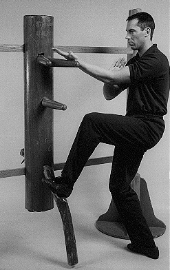 Wing Chun Wooden Dummy with Master James Sinclair.