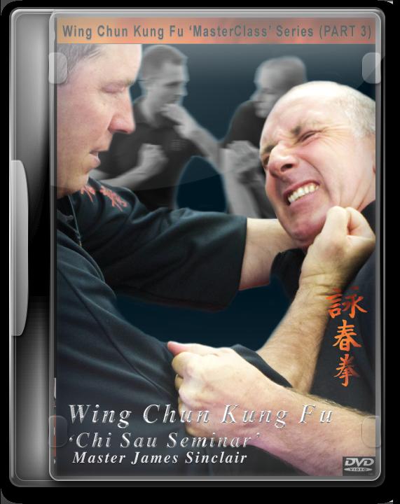 Wing Chun Chi Sau DVD in Clear Case