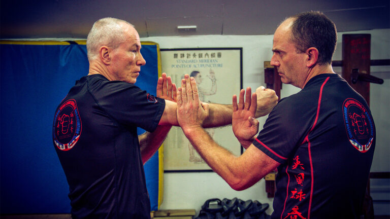 Wing Chun Cham Kiu