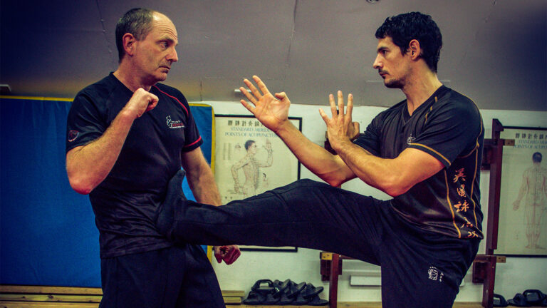 Wing Chun Stop Kick