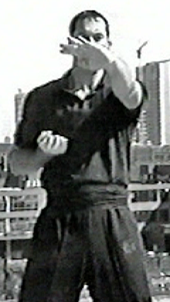 Wing Chun Teacher James Sinclair demonstrates Huen Sau