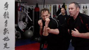 Wing Chun Chi Sau Cover Up