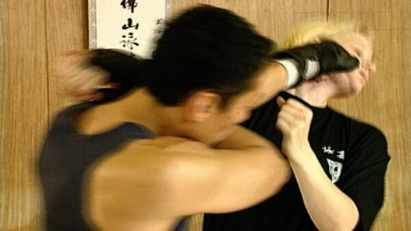 Kung fu Fighting DVD with Master Tang in action