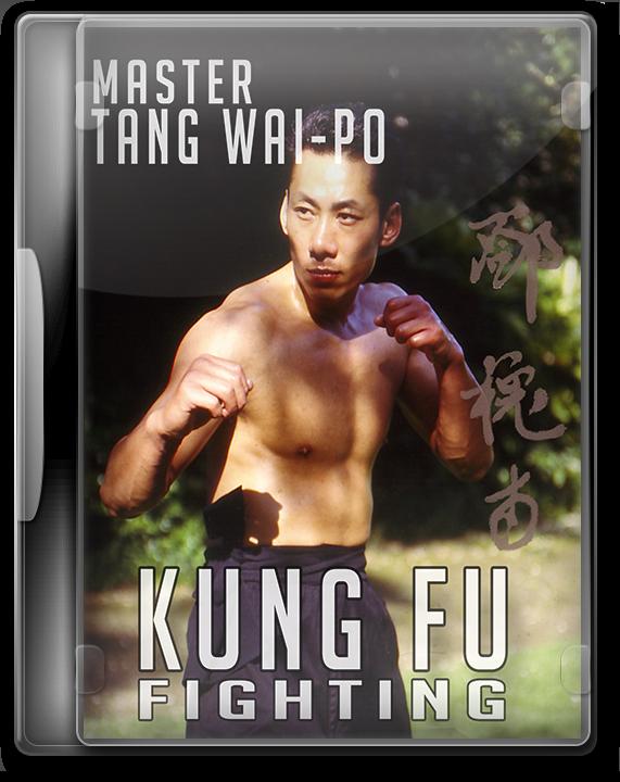 Kung Fu Fighting Wing Chun DVD of Master Tang